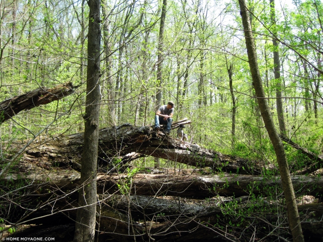 homemoyaone_outdoor-adventures